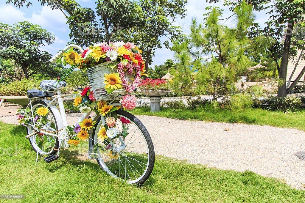 Цветок на велосипеде фоне Газон стоковое фото