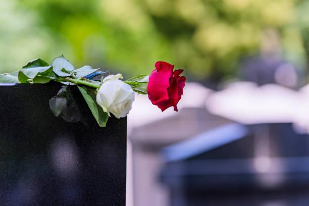 fiore su una tomba in un cimitero - funerale foto e immagini stock