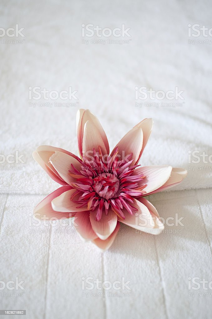 Flower on the massage bed royalty-free stock photo