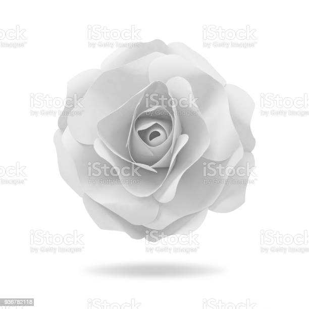 Flower paper on isolated background with clipping path origami floral picture id936782118?b=1&k=6&m=936782118&s=612x612&h=pta6p0k04tymnmkeu4rehxkexysoxwsxokttu6fjqli=