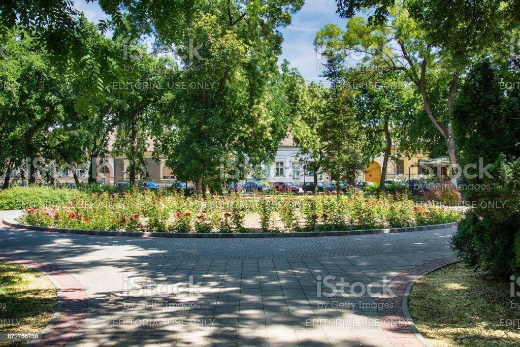 flower park in Sombor stock photo