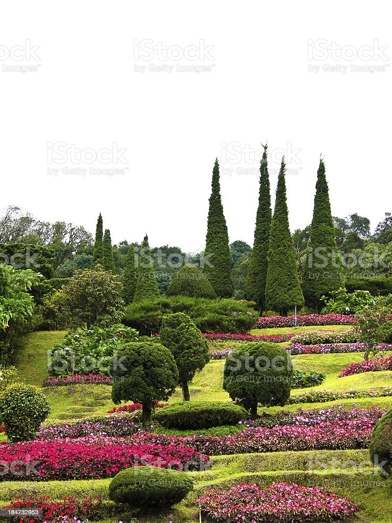 Flower park on the hill royalty-free stock photo
