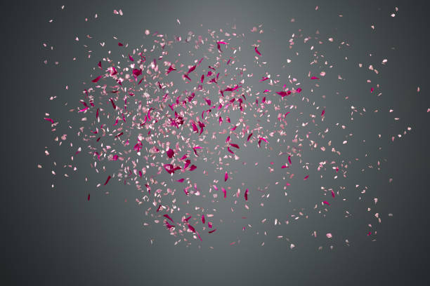 flower petals failing down on dark background - petal stock pictures, royalty-free photos & images
