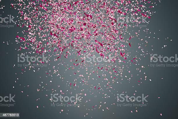 Flower petals on dark background picture id487783513?b=1&k=6&m=487783513&s=612x612&h=2zzdhtilp2azk2nact2iovjzrntamhwg7unxef8ngva=