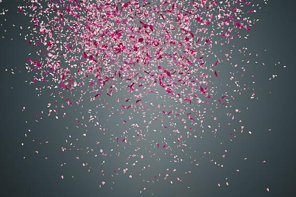 Flower petals on dark background picture id487783513?b=1&k=6&m=487783513&s=612x612&w=0&h= xl5jvgi pbldlvmneyhzjhn8 ydkjndnuls9ha2ysm=