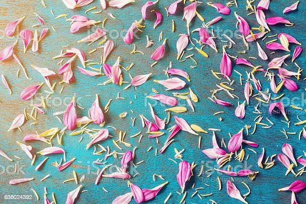 Flower petals picture id638024392?b=1&k=6&m=638024392&s=612x612&h=yelrneo6foppgu0d w0enbt ahhhgmmncxstiusxwga=