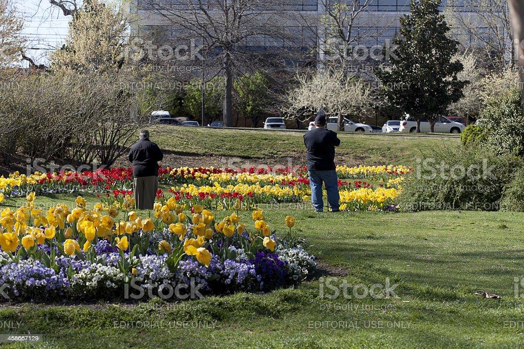 flower photographers stock photo