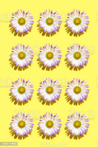 Flower picture id1043770640?b=1&k=6&m=1043770640&s=612x612&h=zpwmbz2v1ymkxho6ct9jhbvtltoicrrp4edzs5wiv50=