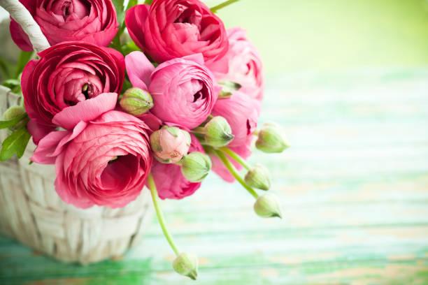 Flower picture id1124691005?b=1&k=6&m=1124691005&s=612x612&w=0&h=shohurm czsrc22wjdqmdc6bqxtpbqtq18moeej2lpu=