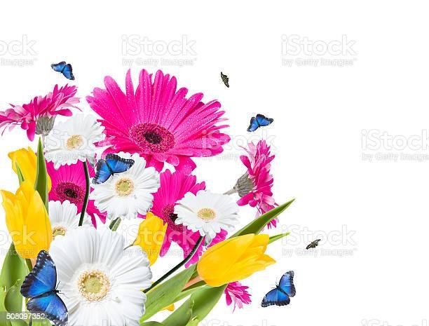 Flower picture id508097352?b=1&k=6&m=508097352&s=612x612&h=fbrjpdaahu5i8gyb ssjzfmq lnd  bbeov1qjozclw=