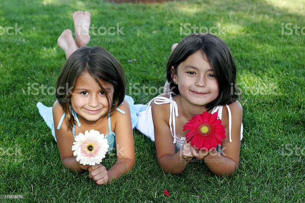 flower portrait royalty-free stock photo