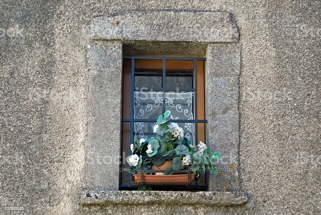 Flower pot in window of stone house stock photo
