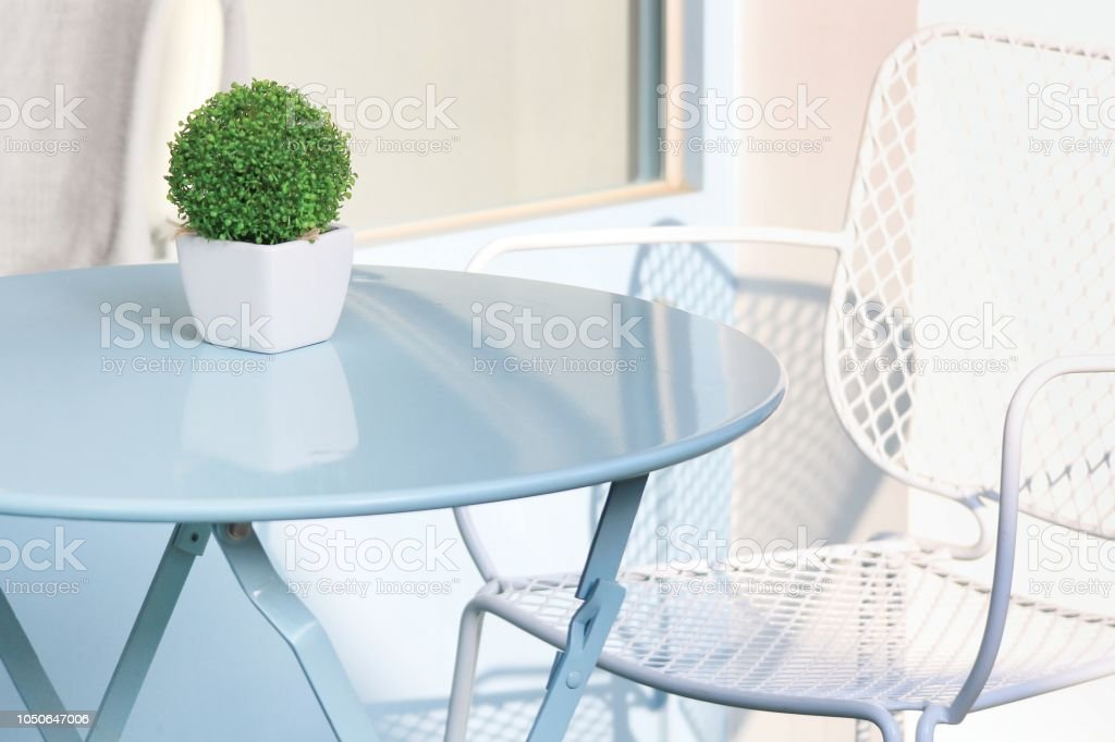 Flower pot on the table stock photo