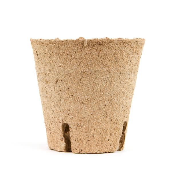 vaso da fiori - biodegradabile foto e immagini stock