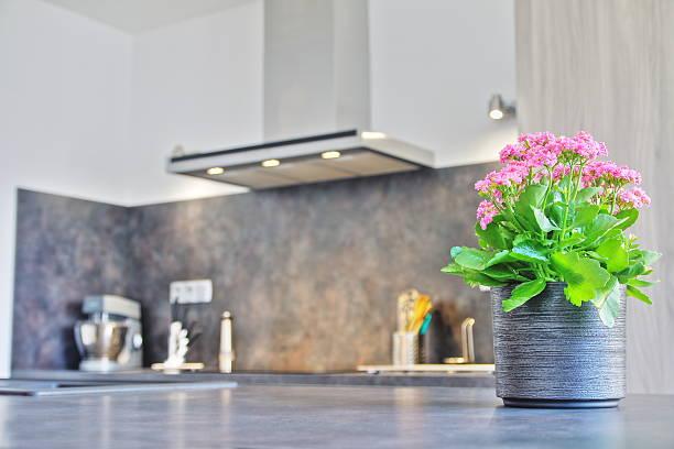 Flower pot plant in modern kitchen picture id535848761?b=1&k=6&m=535848761&s=612x612&w=0&h=a ejsrz3dv84ddcdz1ryql1t72wrtbrartzxhdptlrk=
