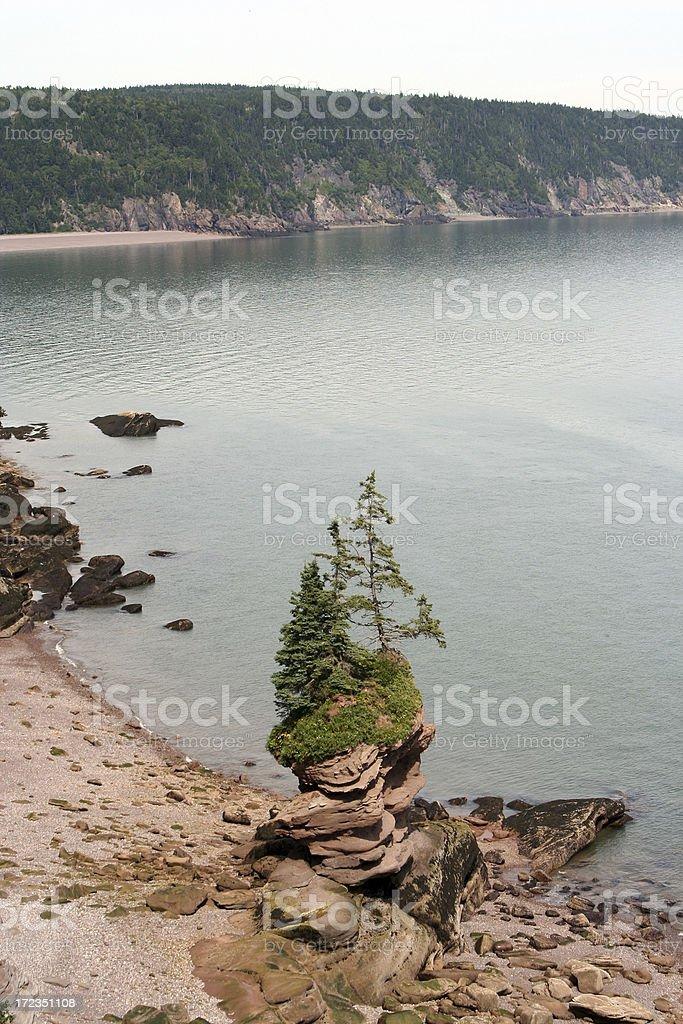 Flower Pot Rock royalty-free stock photo