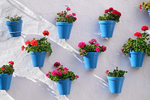 Flower pots decorating on white wall in the old town of Marbella