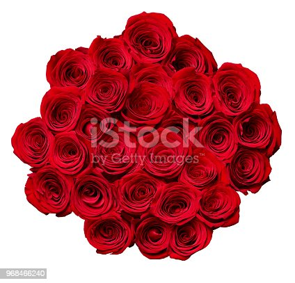 867916232 istock photo flower rose petal blossom red nature beautiful background 968466240