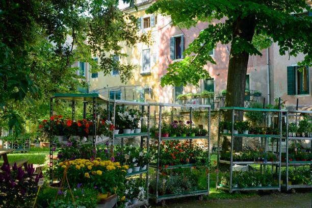 Flower sale Venice stock photo