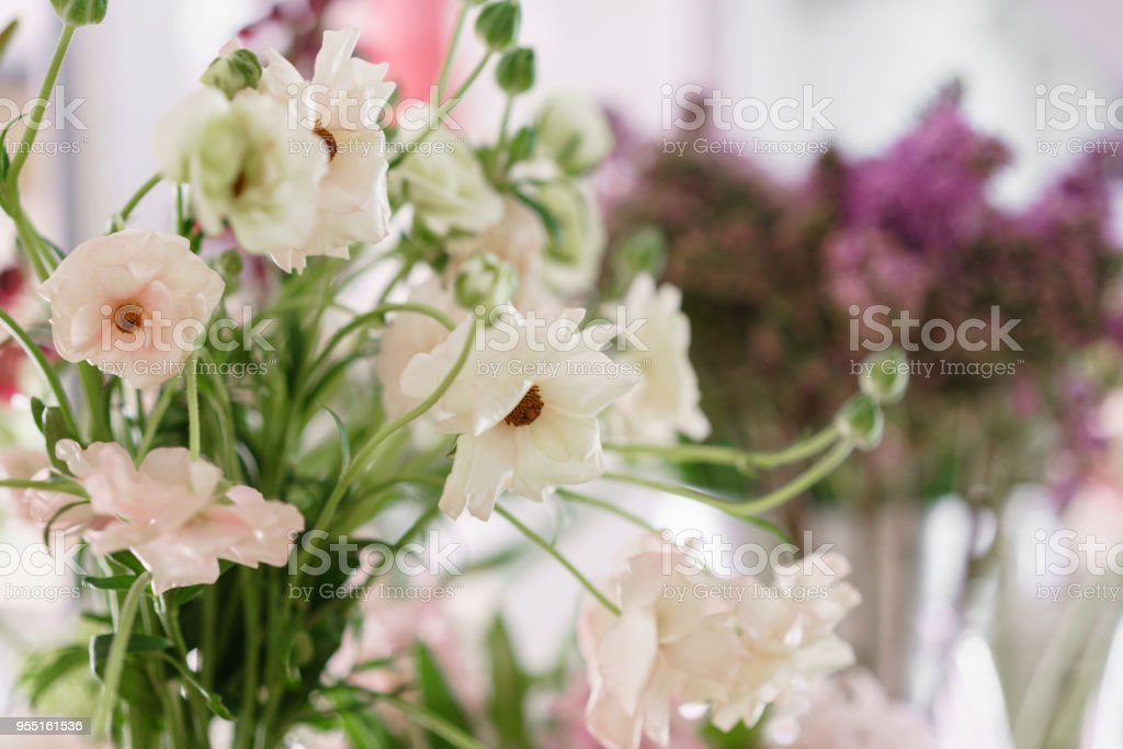 Flower shop concept different varieties fresh spring flowers in flower shop concept different varieties fresh spring flowers in refrigerator room for flowers bouquets mightylinksfo