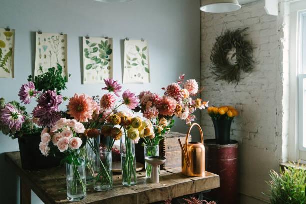 bloemenwinkel - dahlia stockfoto's en -beelden