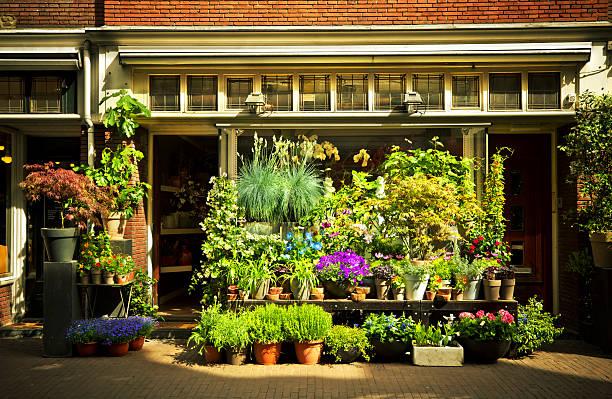 magasin de fleurs - fleuriste photos et images de collection