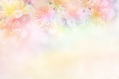 beautiful flower soft background in pastel tone for valentine or wedding card in vintage style