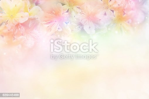 Flower Soft Background In Pastel Tone For Valentine Or