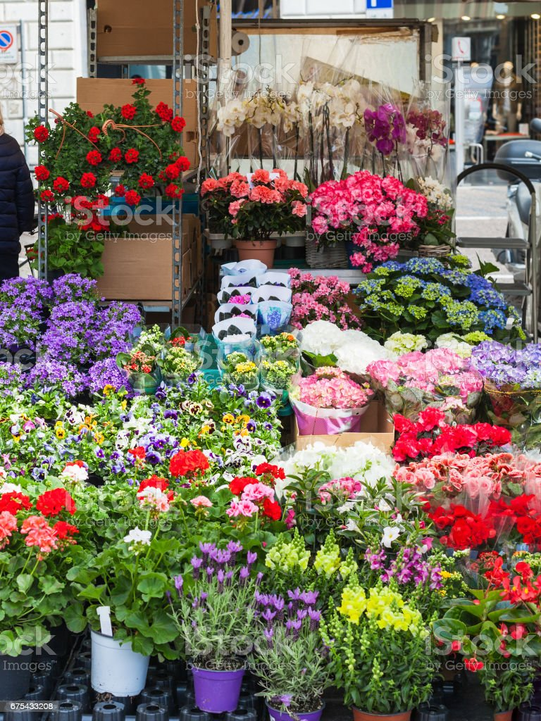 flower stall on street in Padua city in spring royalty-free stock photo