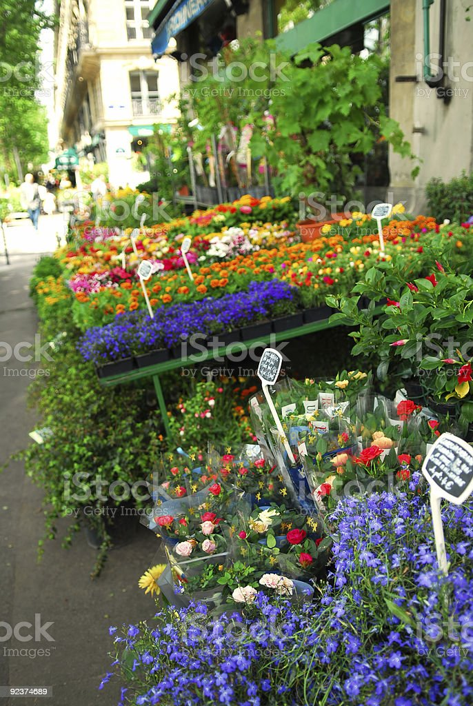 Flower stand in Paris royalty-free stock photo