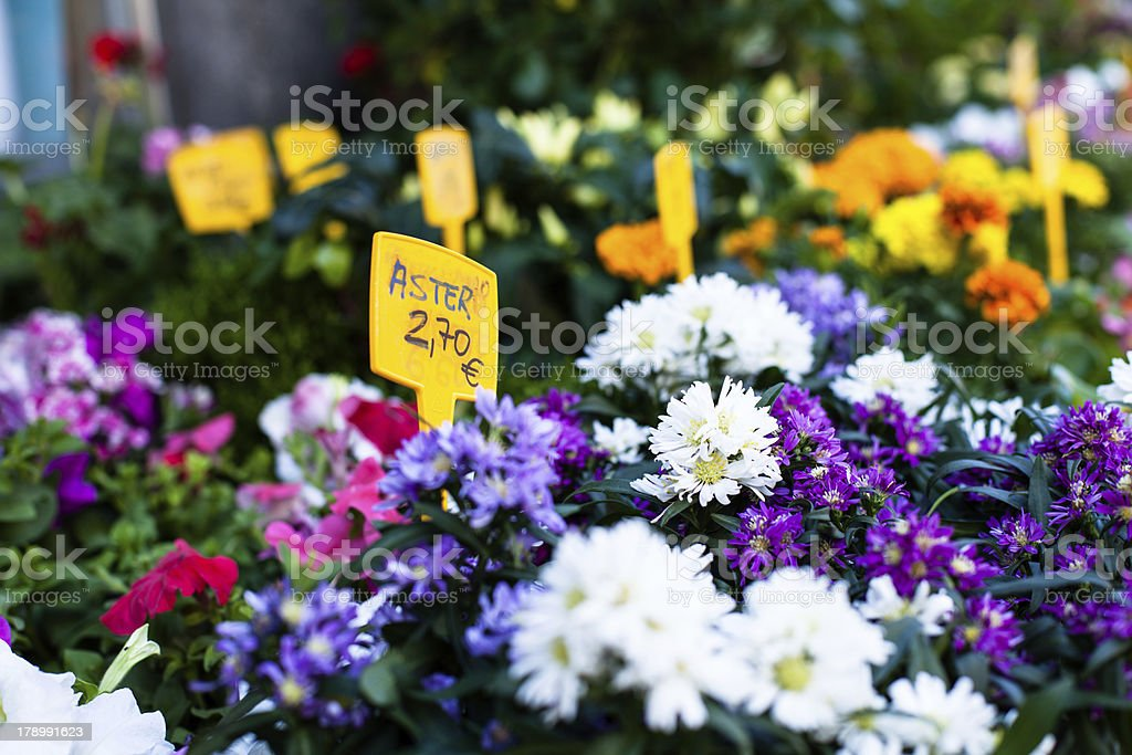 Flower stand  in spanish street. royalty-free stock photo