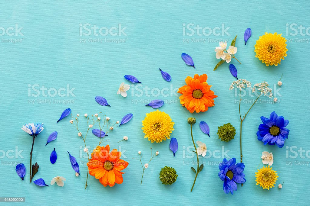 Flower still life, flat lay stock photo