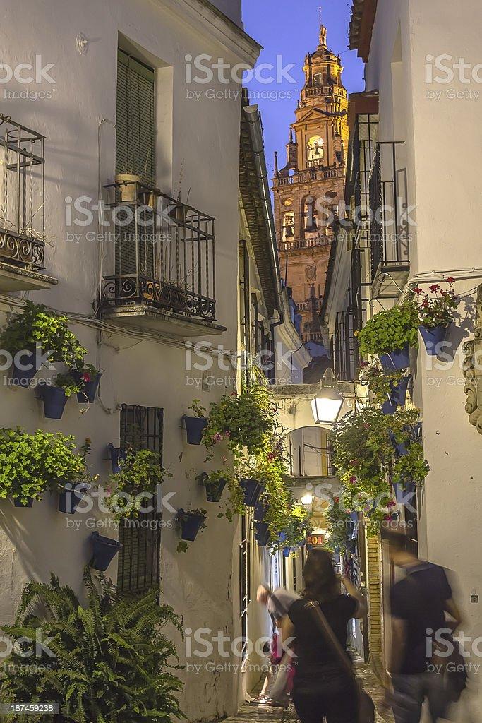 Flower Street in Cordoba stock photo