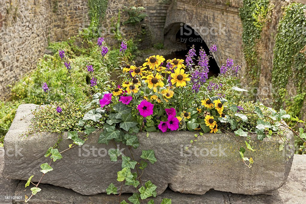Flower Tub from a stone royalty-free stock photo