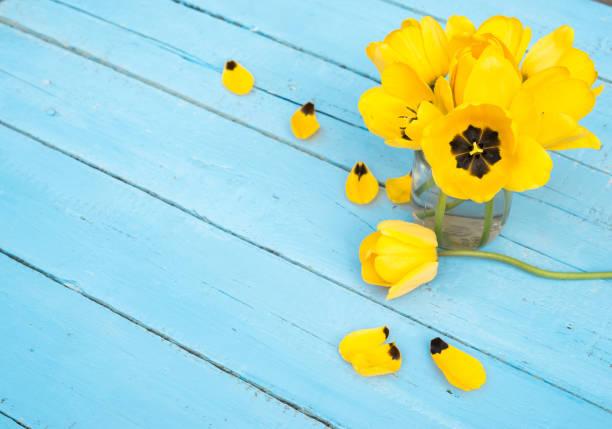 Blume. Tulpe. Frühling Blumen. Bouquet von gelben Tulpen auf Türkis Hintergrund aus Holz. Gruß für Frauen, Muttertag, Valentinstag. Textfreiraum – Foto