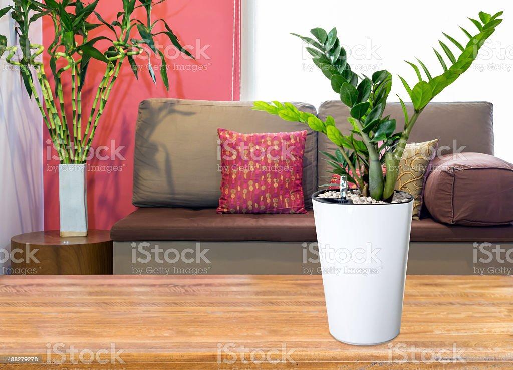 Wazon Z Kwiatami Na Stół Na Kanapiesalon Tle Zdjęcia