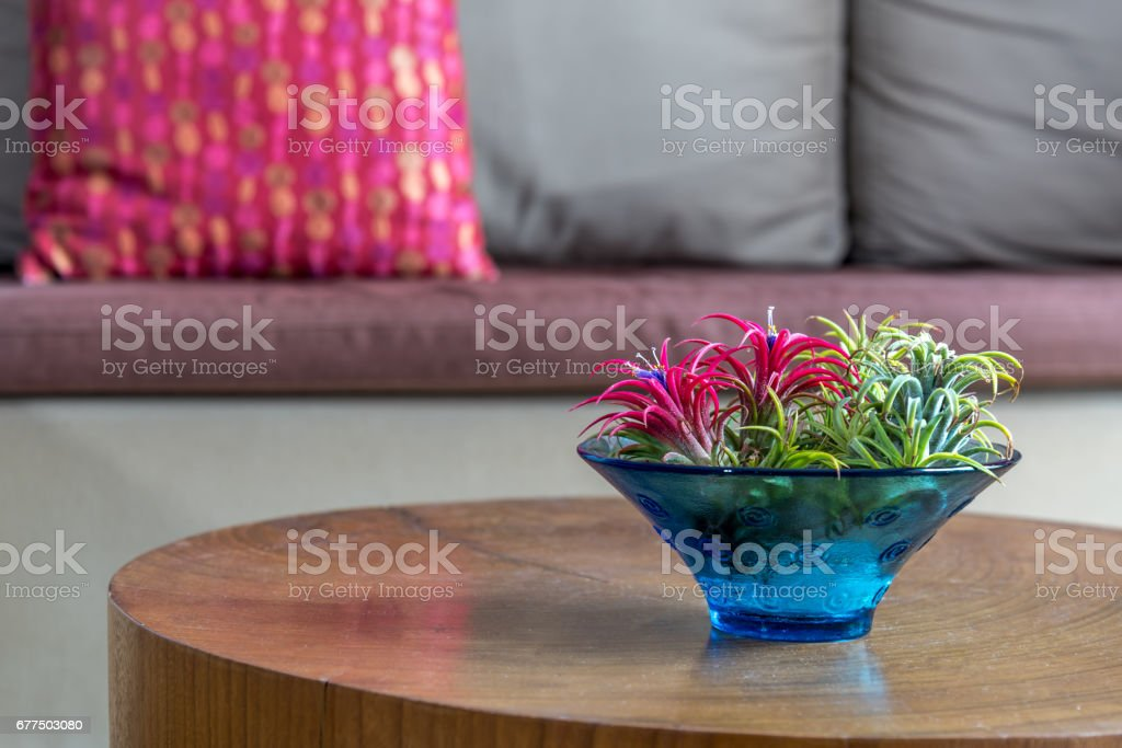 Flower vase on wooden table with couch background / lifestlye & home decoration conceptual – zdjęcie