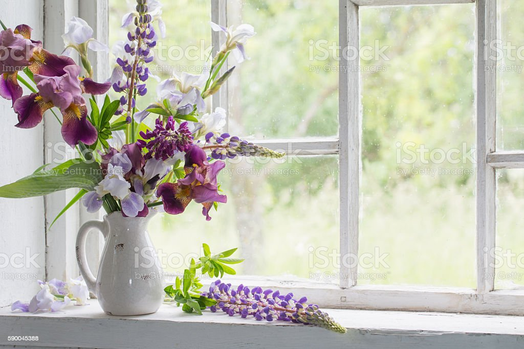 Flower Vase Sitting Inside Of Window Stock Photo More Pictures Of