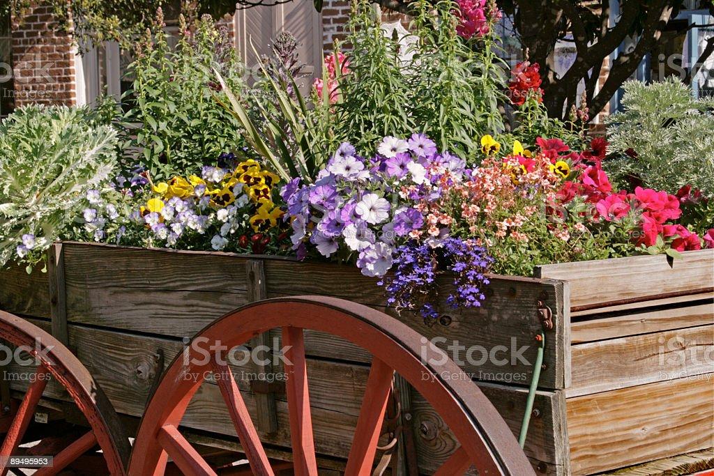 Flower Wagon royalty free stockfoto