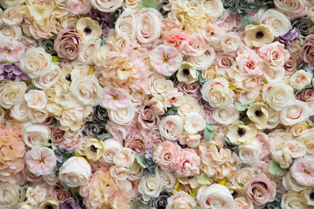 flower wall abstract pattern natural floral backdrop for weddings and birthday parties other events flower wall abstract pattern natural floral backdrop for weddings and birthday parties other events flower wall - motif floral photos et images de collection