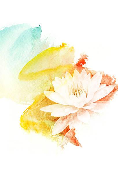 blume aquarell illustration. - lotus zeichnung stock-fotos und bilder