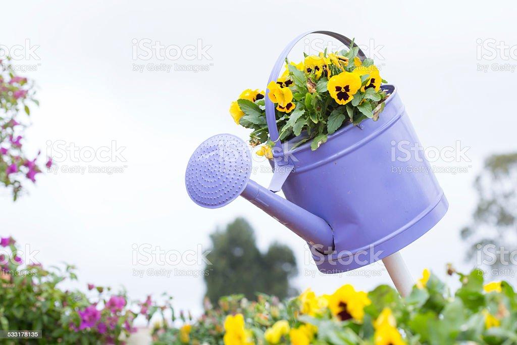 Flower watering tool stock photo