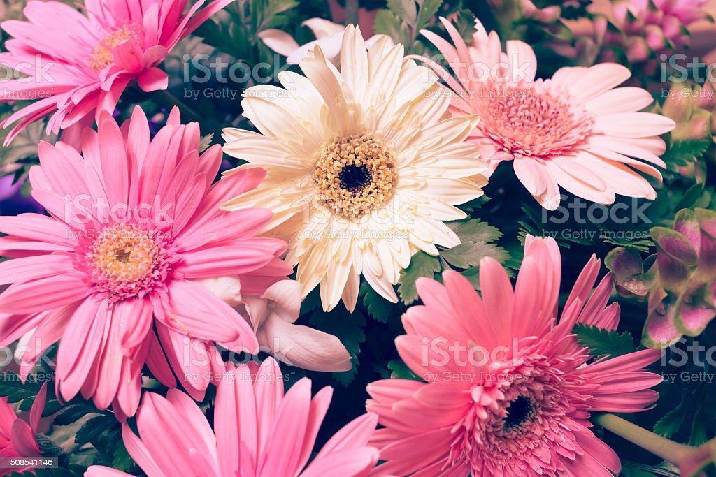 Blumen Hochzeit Dekoration Wunderschone Gerbera Blumen Erbluhen