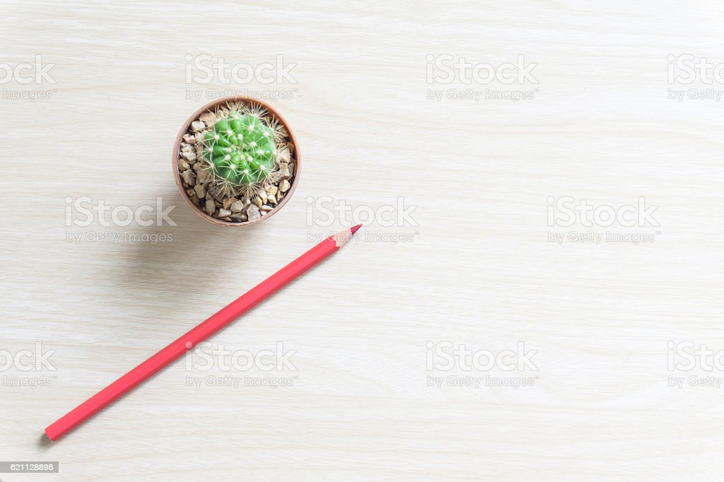flower,and colorful pencils. View from above with copy space stock photo