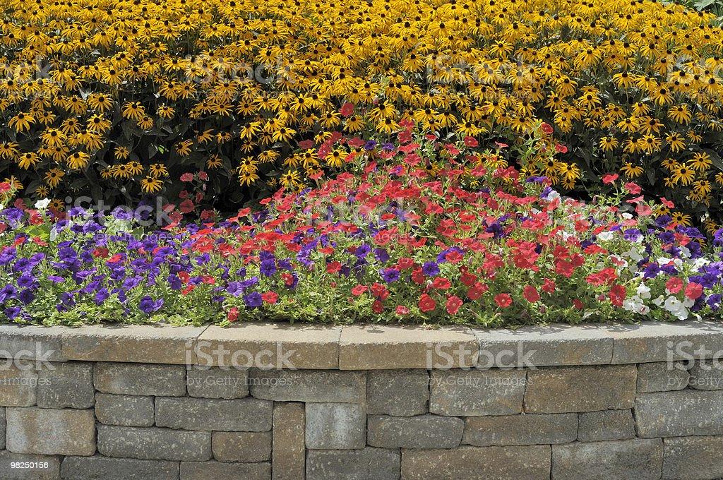 Flowerbed stock photo