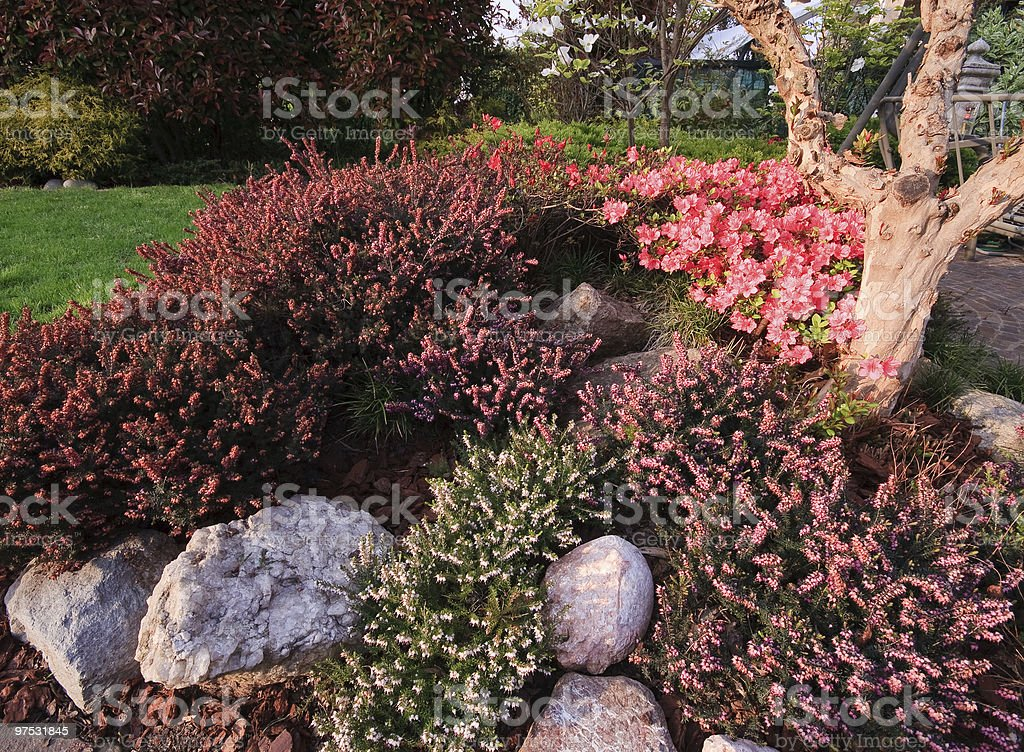 flowerbeds royalty-free stock photo