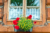 A flowerbox hangs in front of an old window, Europe.