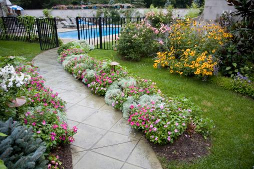 Garden walk leading to pool area. Wet with rain.