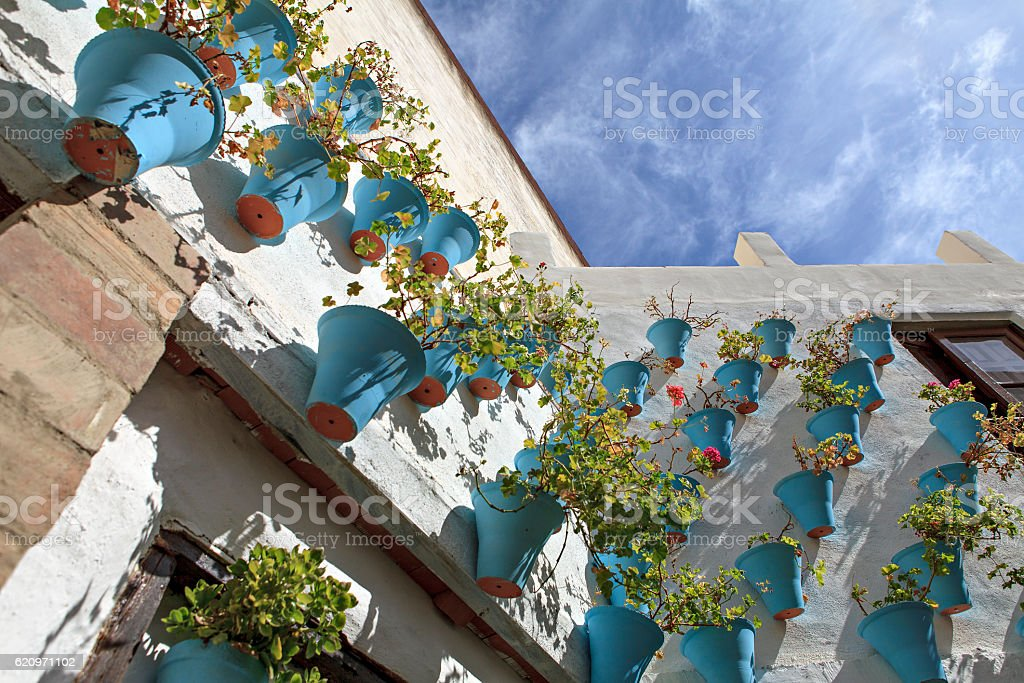 flowered spanish patio stock photo