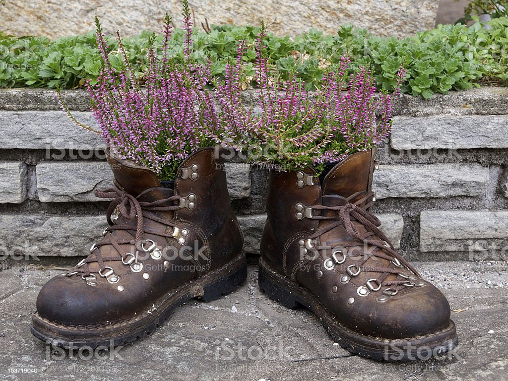 Flowering boots stock photo